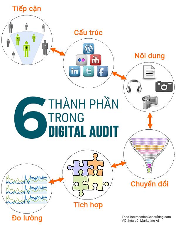 6 thành phần cơ bản trong digital audit