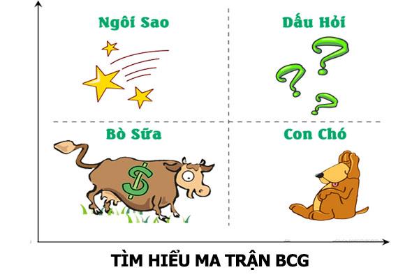 thị phần là gì - Ứng dụng ma trận BCG để tìm thị phần tăng trưởng. Nguồn: Internet