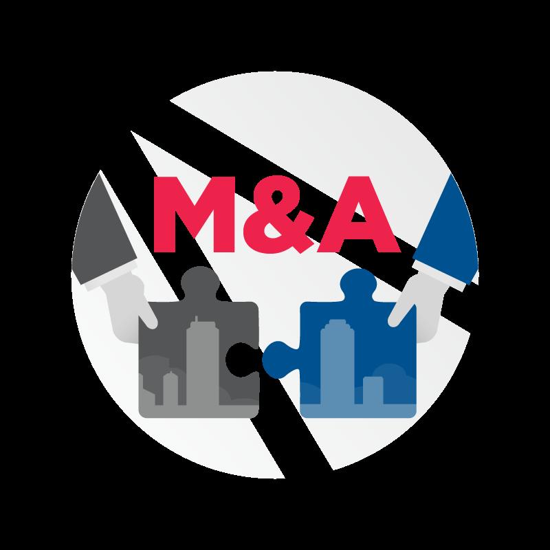 các hình thức m&a là gì