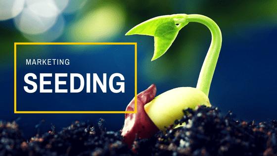 seeding là gì 01