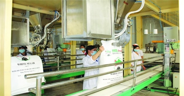 Tập trung vào nguyên liệu sản xuất