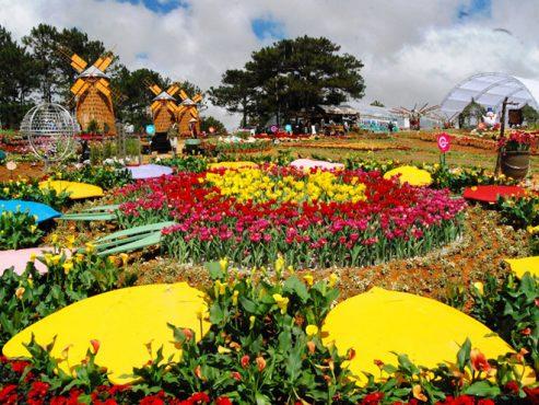 Event là gì? Lễ hội festival hoa Đà Lạt