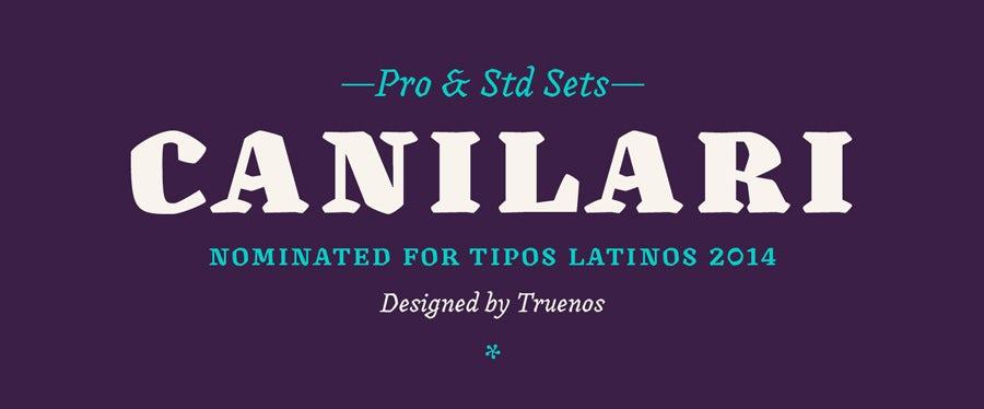 25 loại font chữ thiết kế logo kinh điển các designer cần biết 6
