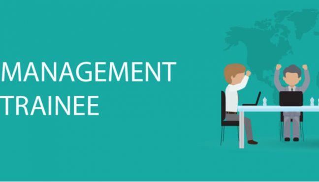 Management Trainee là gì? Điểm yếu của bạn là gì?