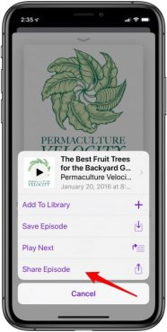 Podcast là gì? Hướng dẫn sử dụng Podcast trên iPhone và iPad
