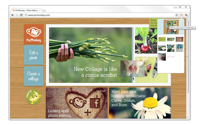 Picmonkey - Top những phần mềm chỉnh sửa ảnh online