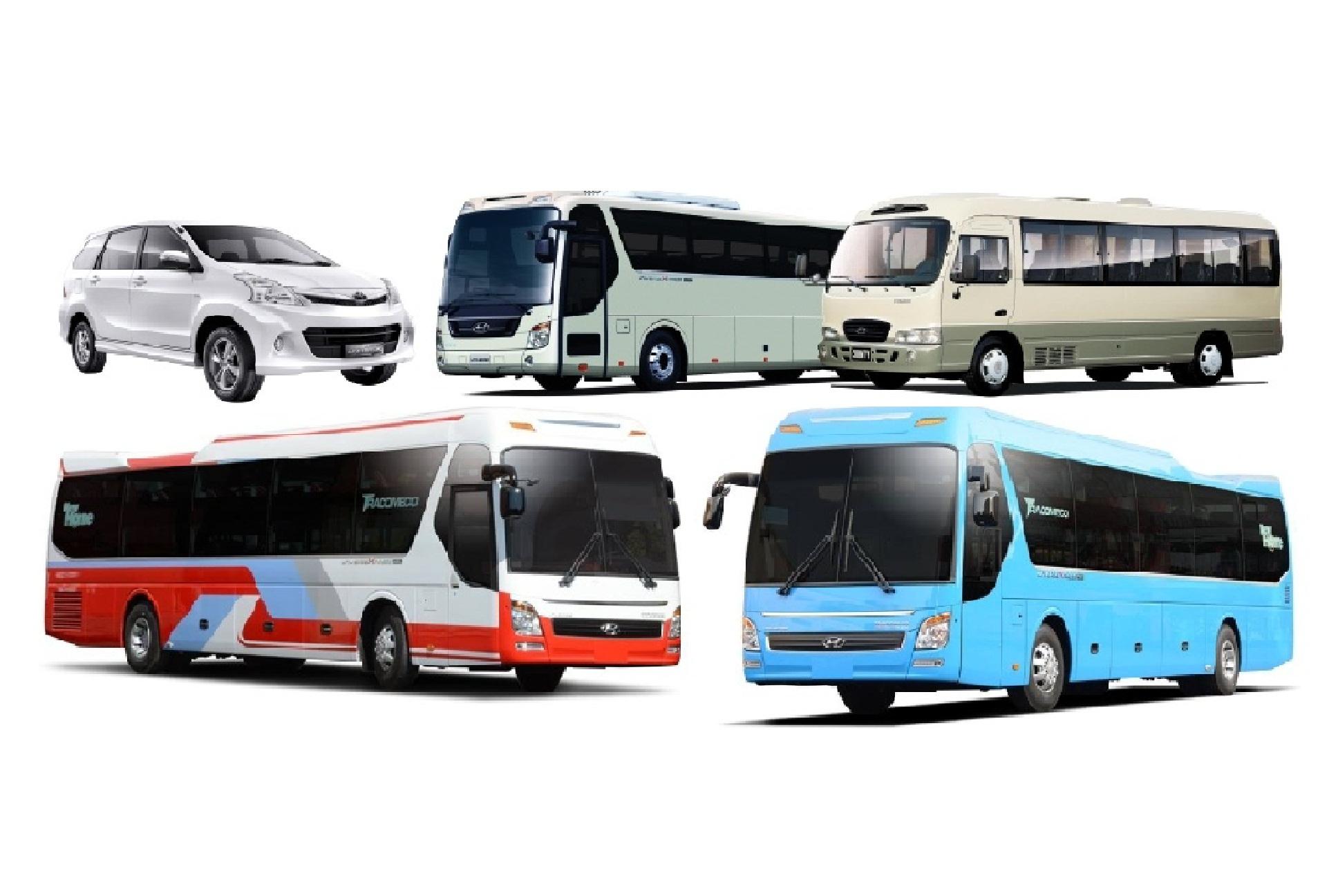 Kinh doanh gì sau Tết? Dịch vụ cho thuê xe du lịch